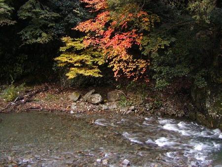 滝畑H16.11.13