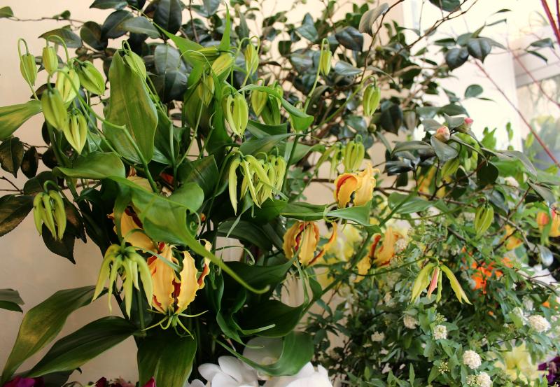 f:id:bellerose-fleuristes:20180301185255p:plain