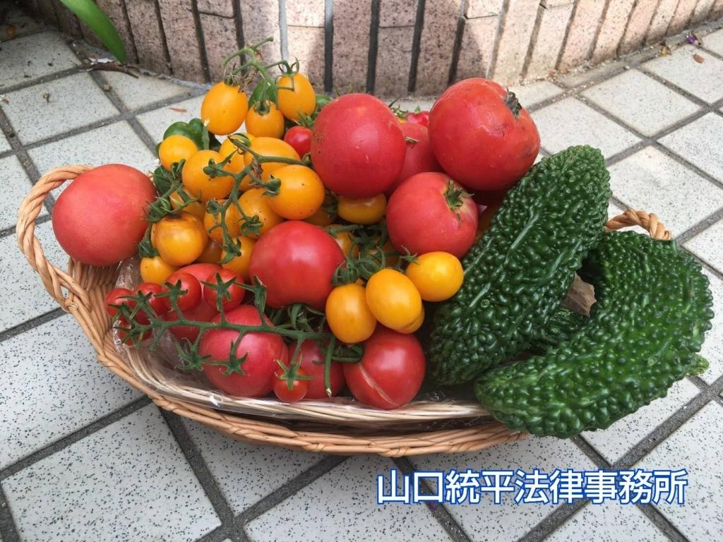 f:id:bengoshi-nagoya:20180820143445j:plain
