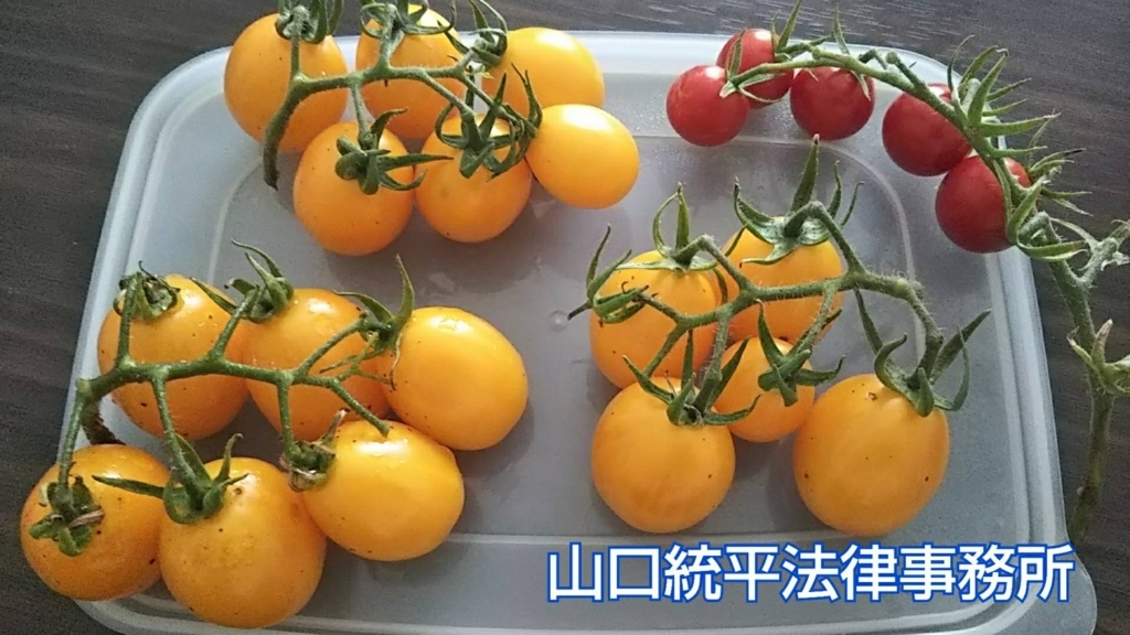 f:id:bengoshi-nagoya:20180820143507j:plain