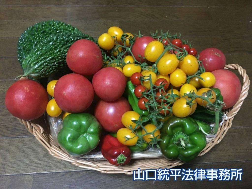 f:id:bengoshi-nagoya:20180820143533j:plain