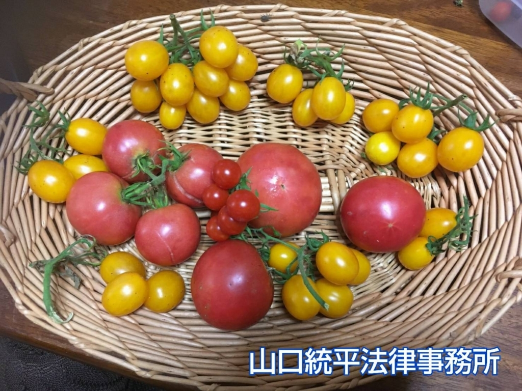 f:id:bengoshi-nagoya:20180820144515j:plain