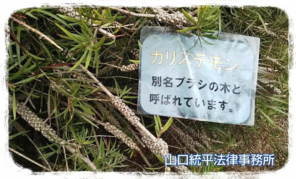 f:id:bengoshi-nagoya:20181120010420j:plain
