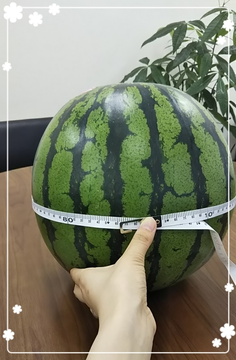 f:id:bengoshi-nagoya:20190619215044j:plain