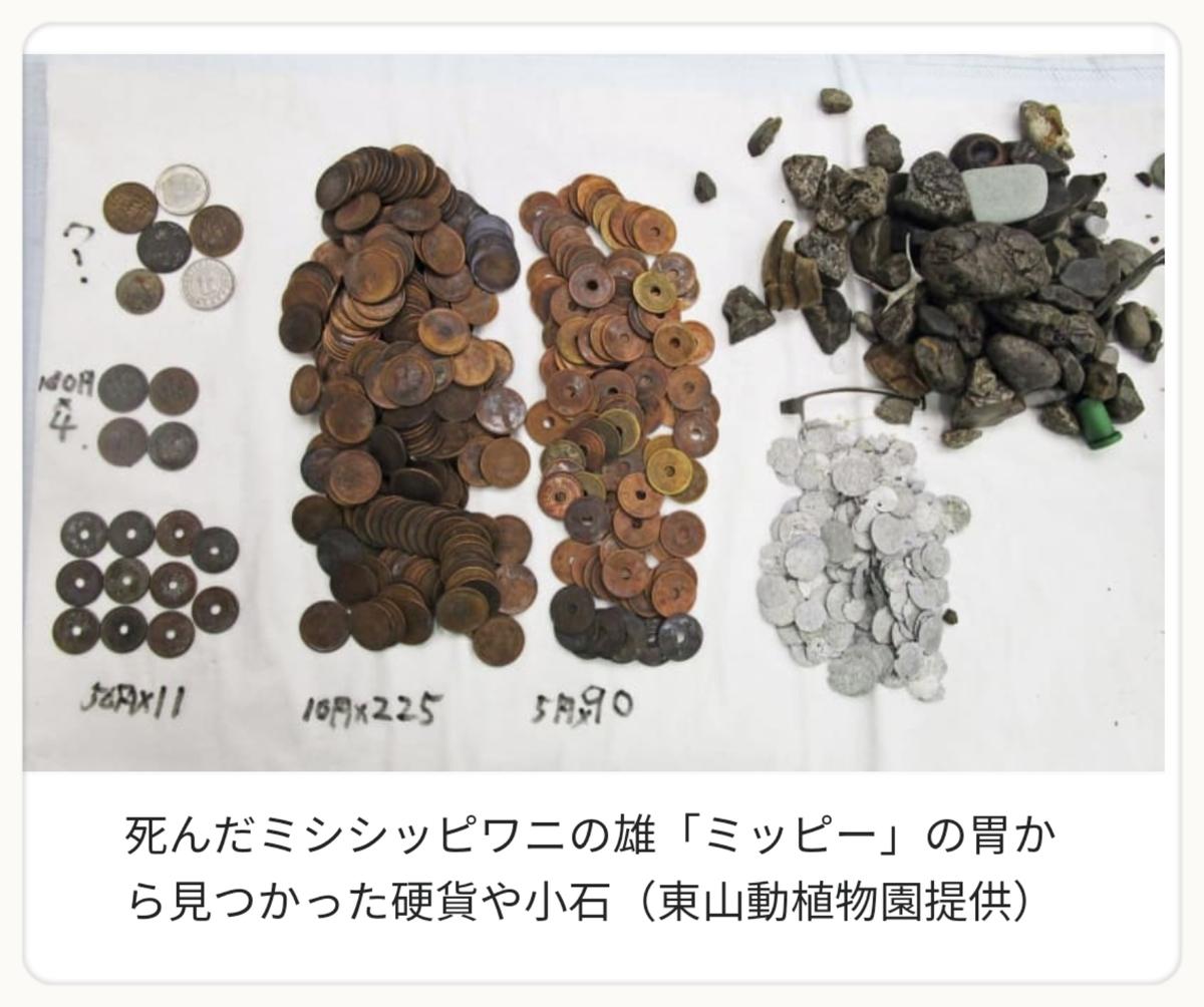f:id:bengoshi-nagoya:20191003175153j:plain