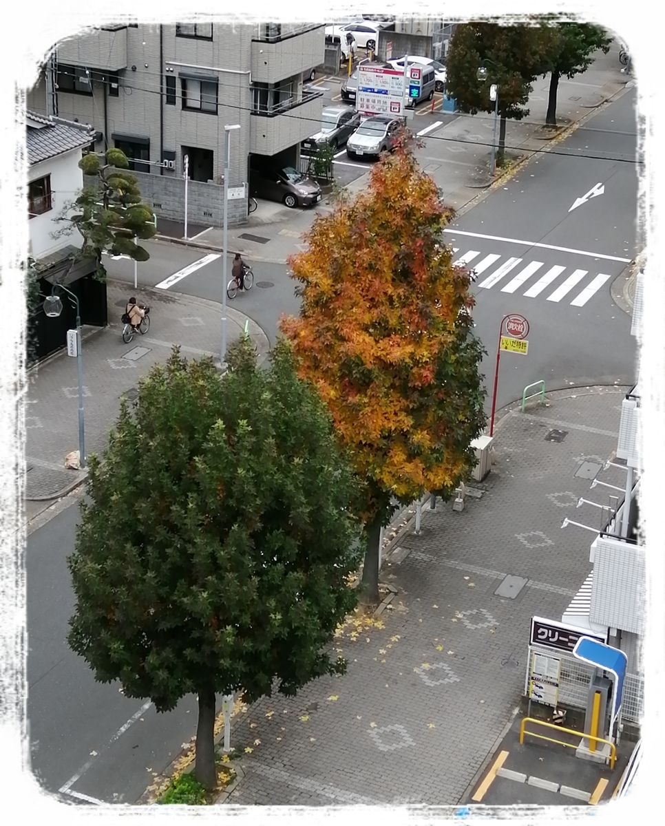 f:id:bengoshi-nagoya:20191222234224j:plain