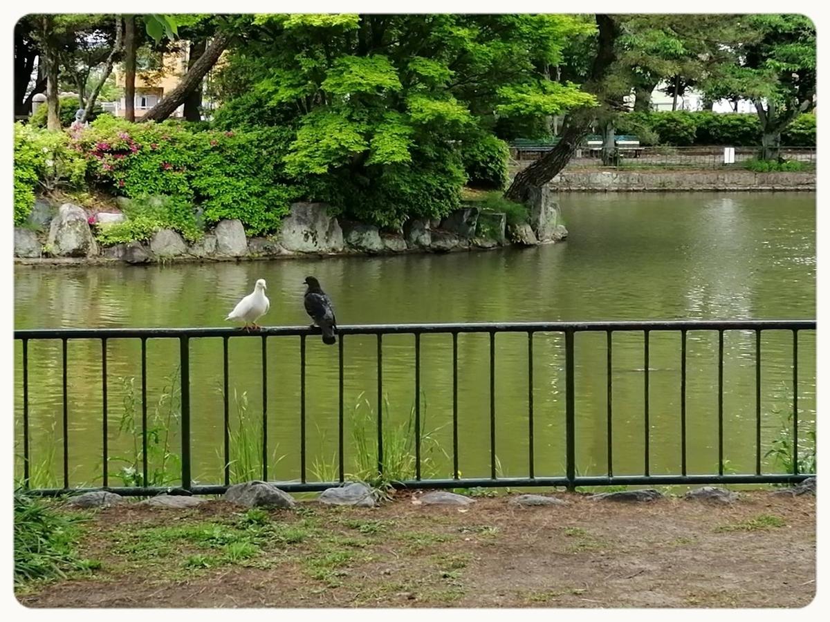 f:id:bengoshi-nagoya:20200505004656j:plain