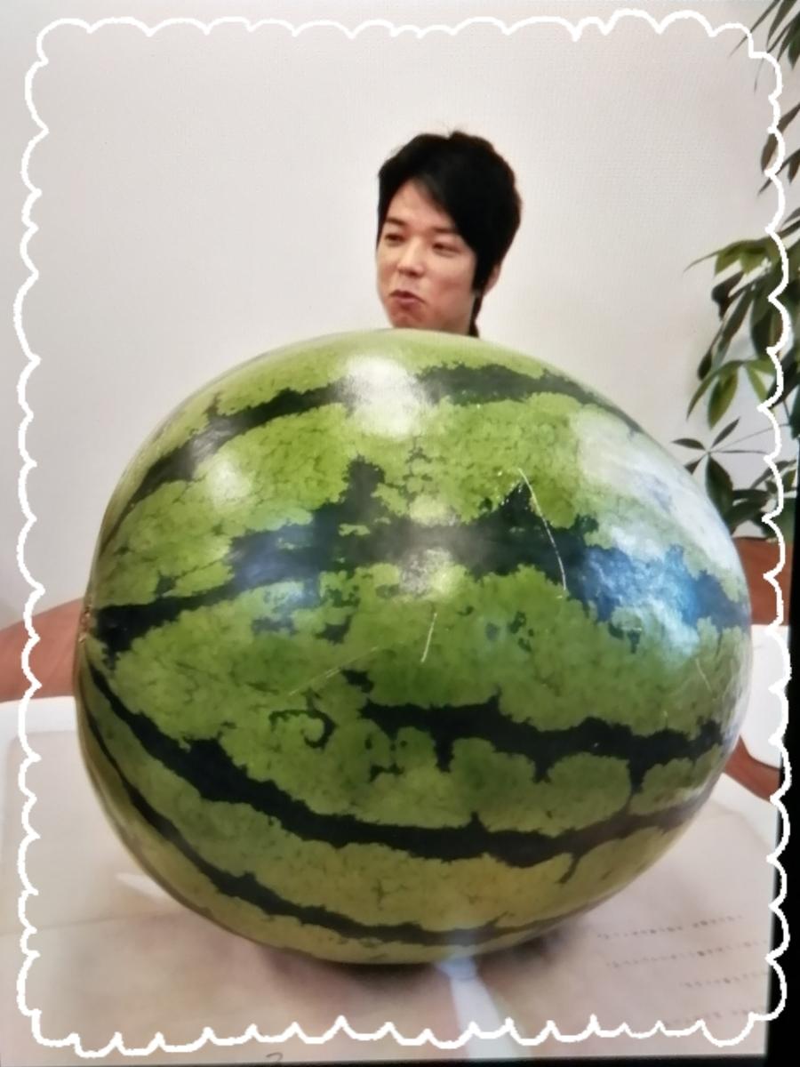 f:id:bengoshi-nagoya:20200831232211j:plain