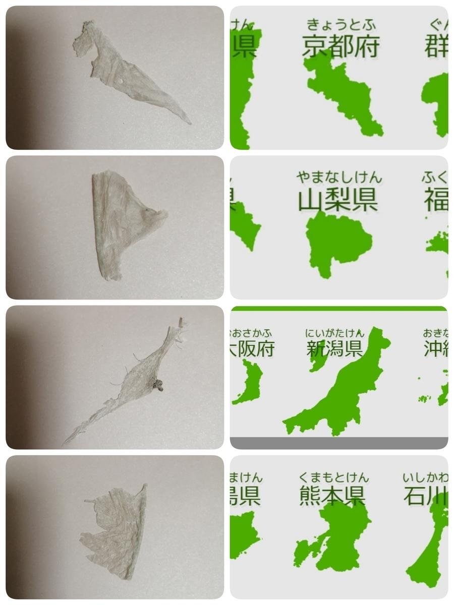f:id:bengoshi-nagoya:20200906003408j:plain