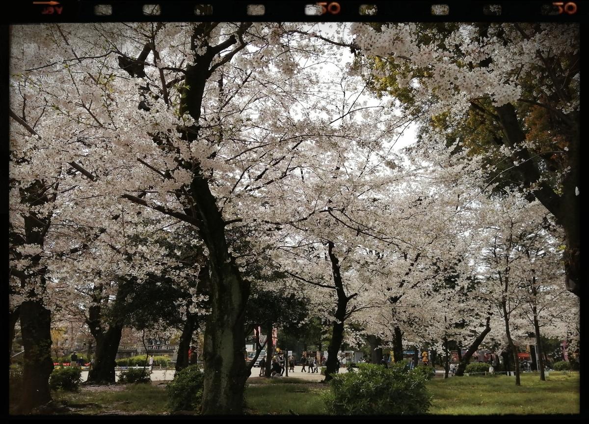 f:id:bengoshi-nagoya:20210330172329j:plain