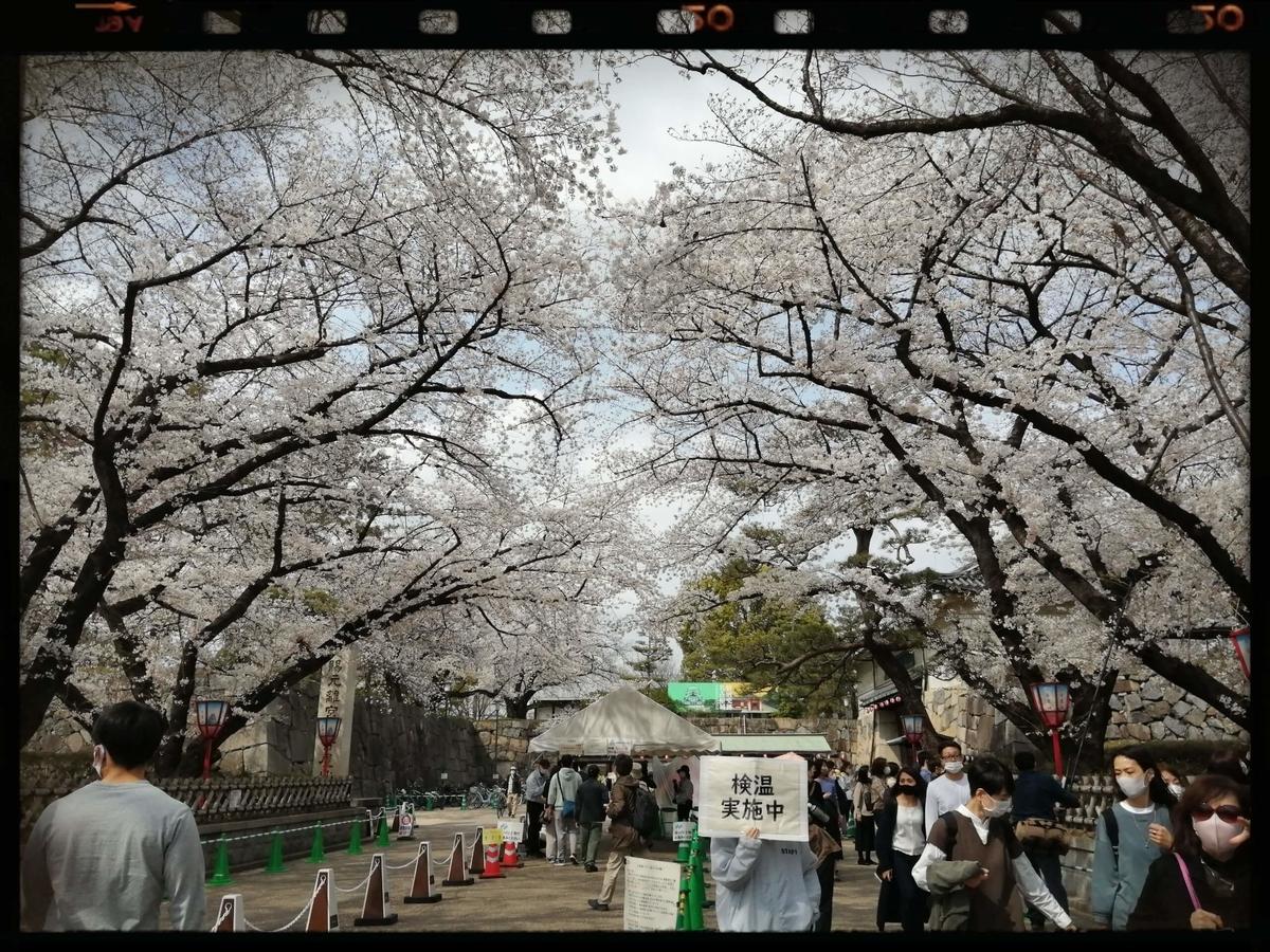 f:id:bengoshi-nagoya:20210405224715j:plain