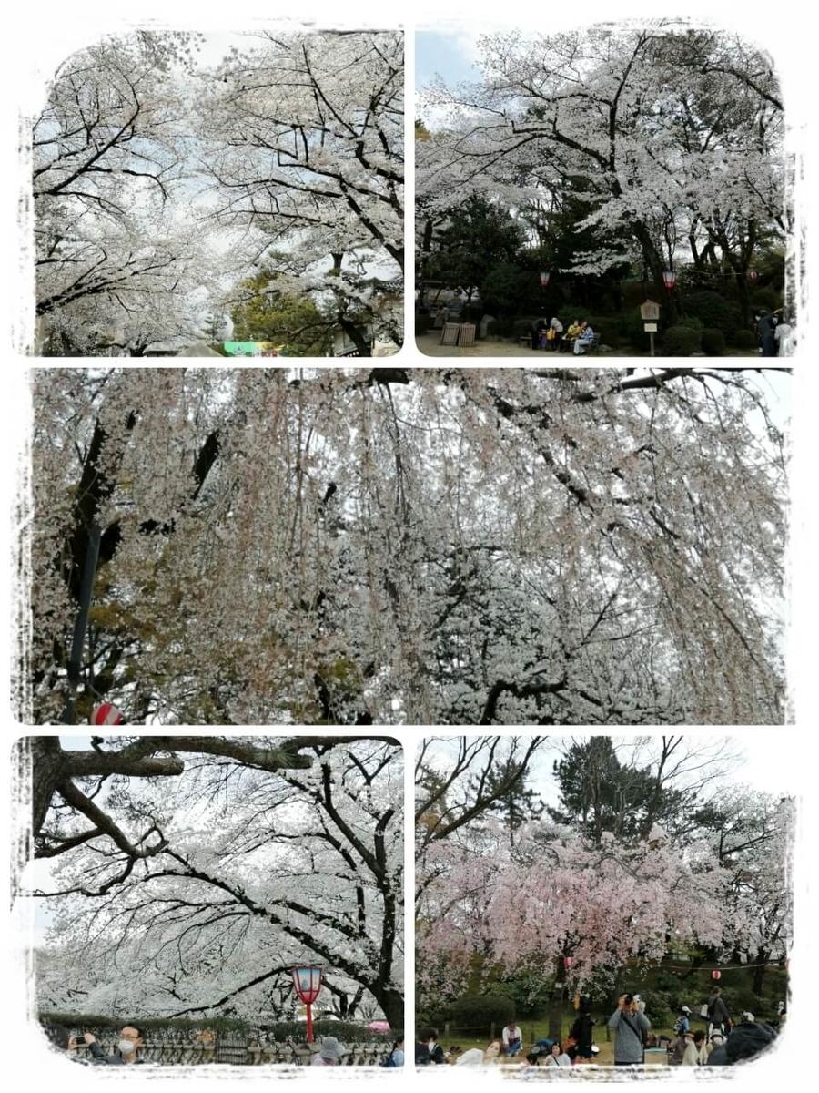 f:id:bengoshi-nagoya:20210405230448j:plain