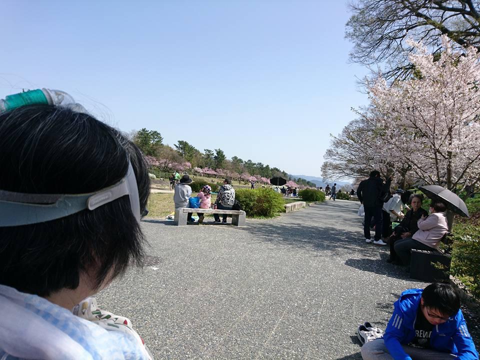 f:id:benkaku:20180402124318j:plain