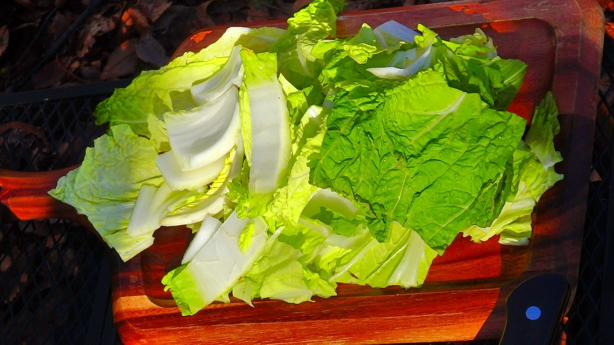 白菜をカット