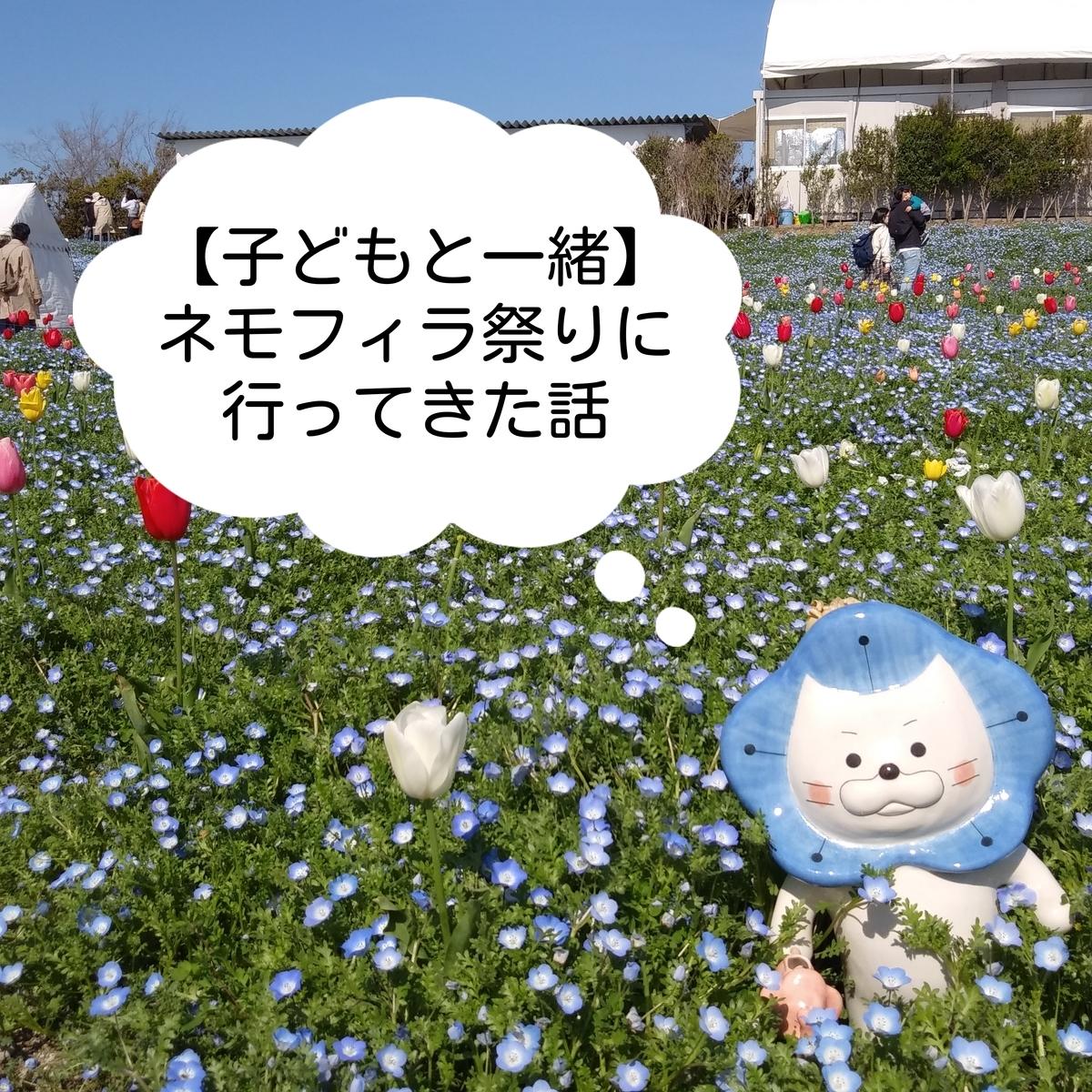 大阪・舞洲のネモフィラ祭りの見頃は?開催2日目に子ども連れて行ってきました☆ - べぽんぬライフ別館