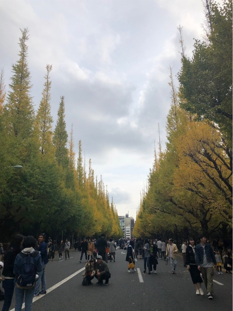 f:id:beppukannawa380:20181119121608j:image