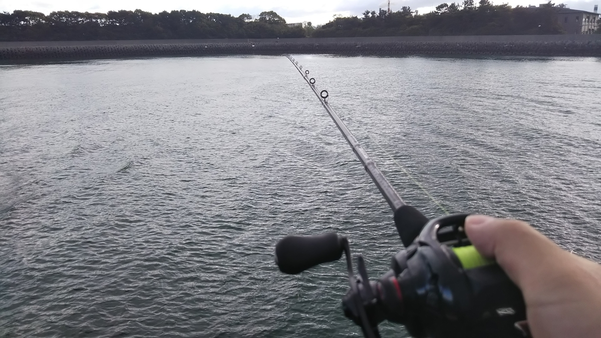 f:id:berao-setouchi-fishing:20190806212457j:plain