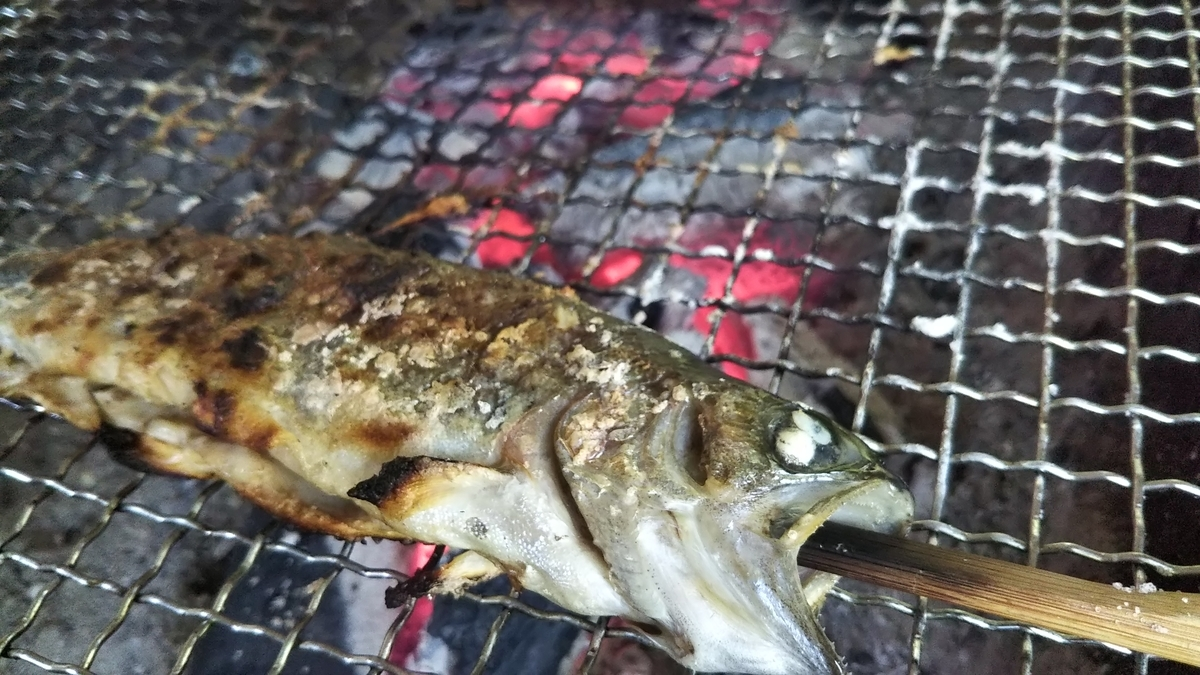 f:id:berao-setouchi-fishing:20190806214925j:plain