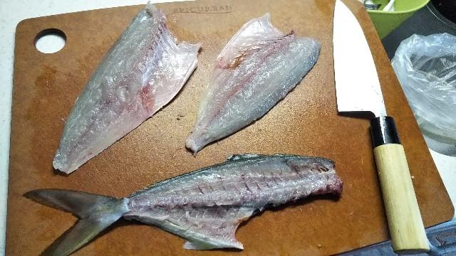 f:id:berao-setouchi-fishing:20190812000037j:image