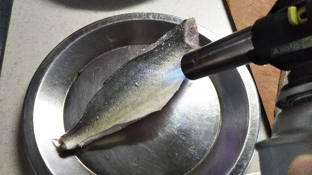 f:id:berao-setouchi-fishing:20190812000049j:image