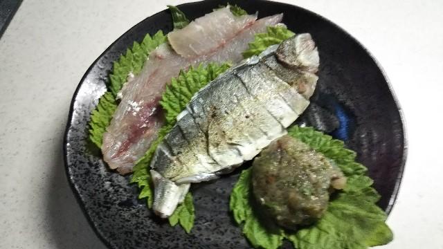 f:id:berao-setouchi-fishing:20190812000127j:image