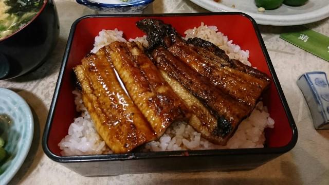 f:id:berao-setouchi-fishing:20190822071604j:image