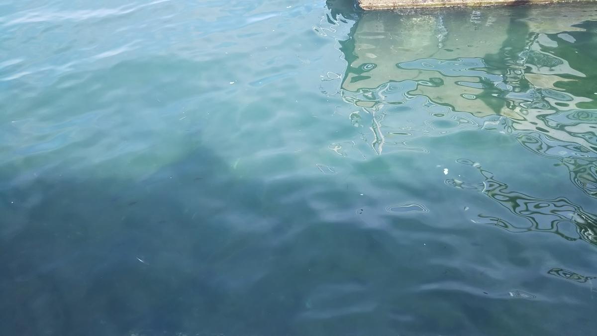 f:id:berao-setouchi-fishing:20191012101638j:plain