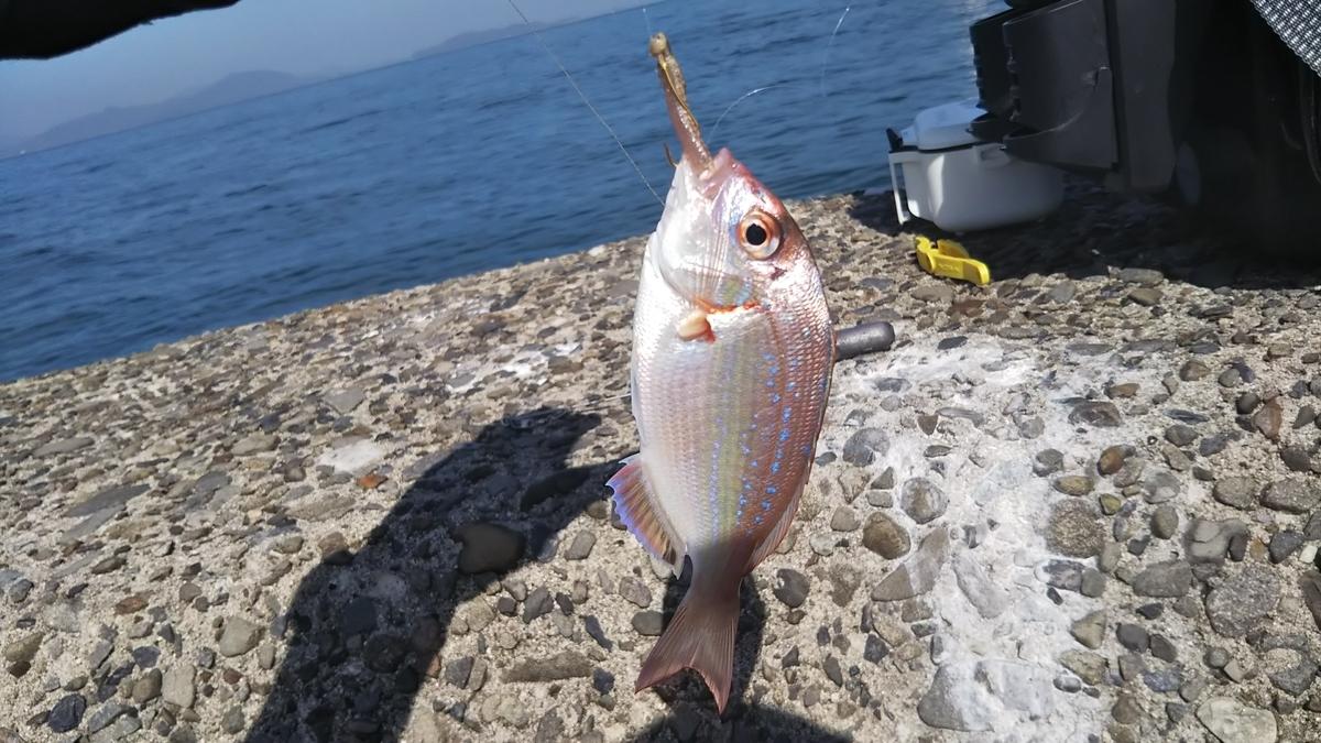 f:id:berao-setouchi-fishing:20191012101858j:plain
