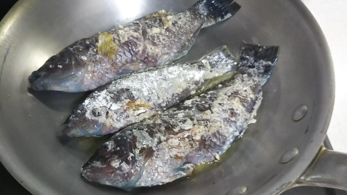 f:id:berao-setouchi-fishing:20191013101139j:plain