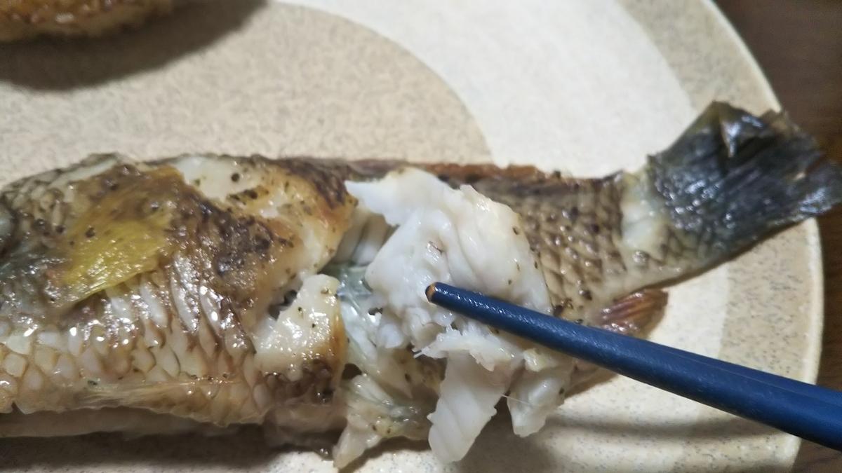 f:id:berao-setouchi-fishing:20191013101216j:plain