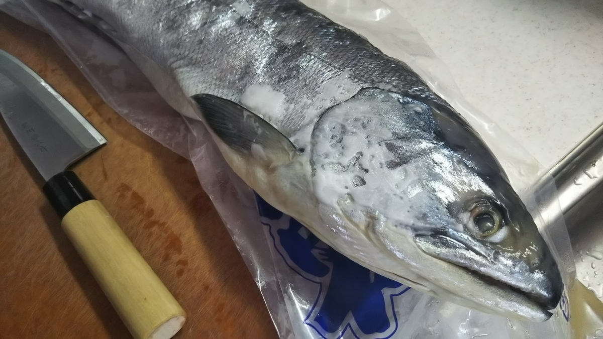 f:id:berao-setouchi-fishing:20191027144115j:plain