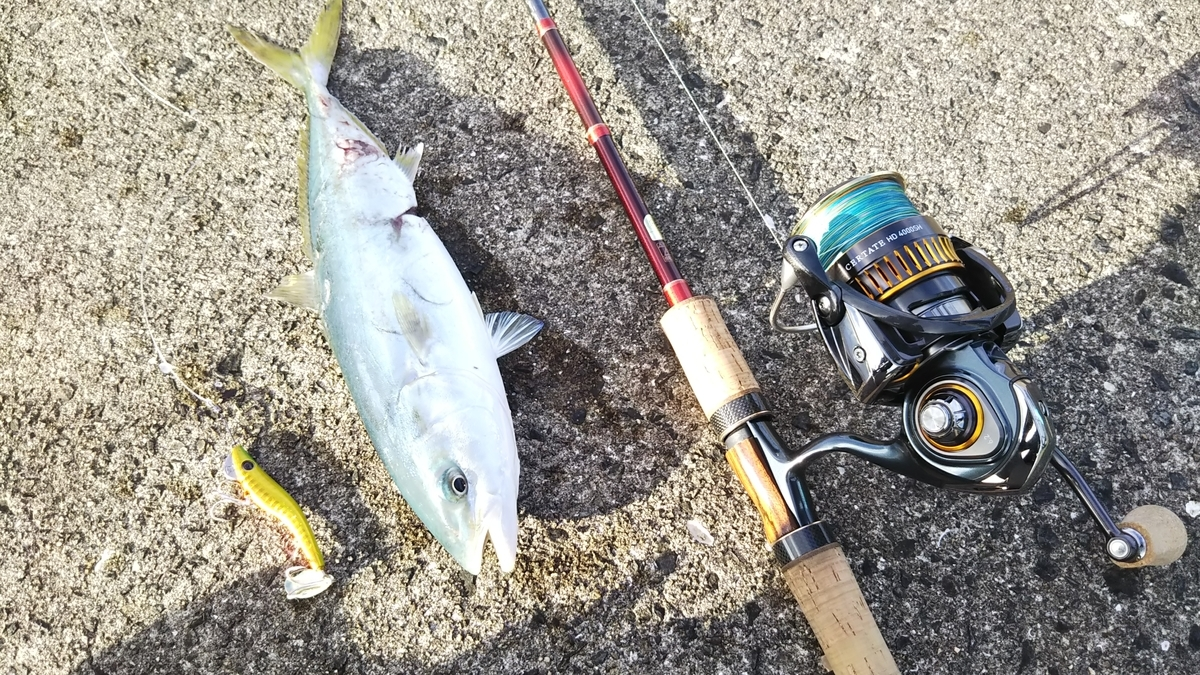 f:id:berao-setouchi-fishing:20191031231615j:plain