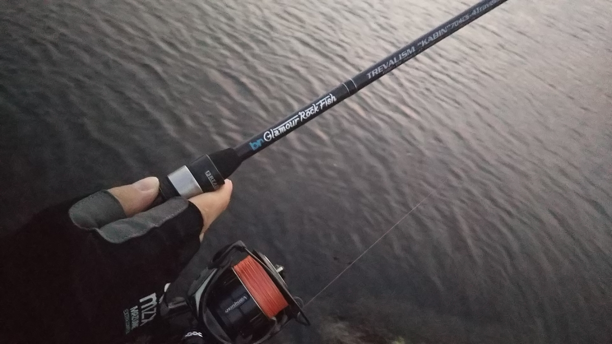 f:id:berao-setouchi-fishing:20191110204345j:plain
