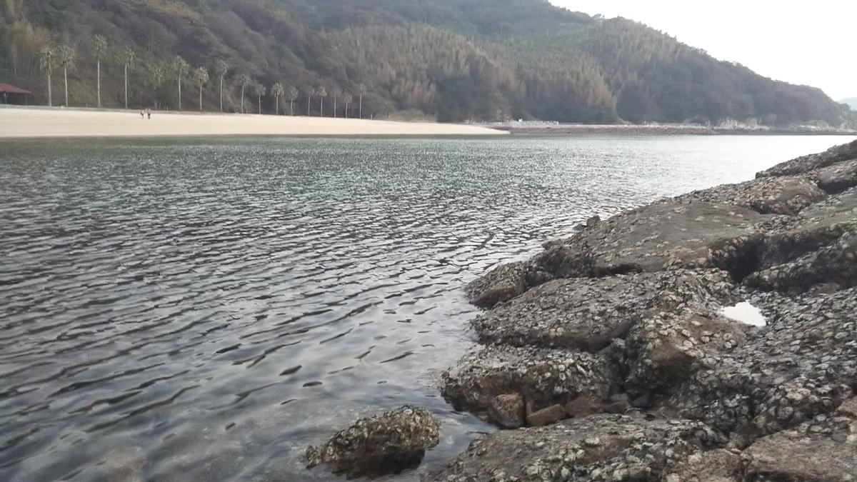 f:id:berao-setouchi-fishing:20191110204426j:plain