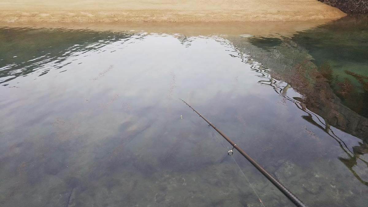 f:id:berao-setouchi-fishing:20191110204530j:plain