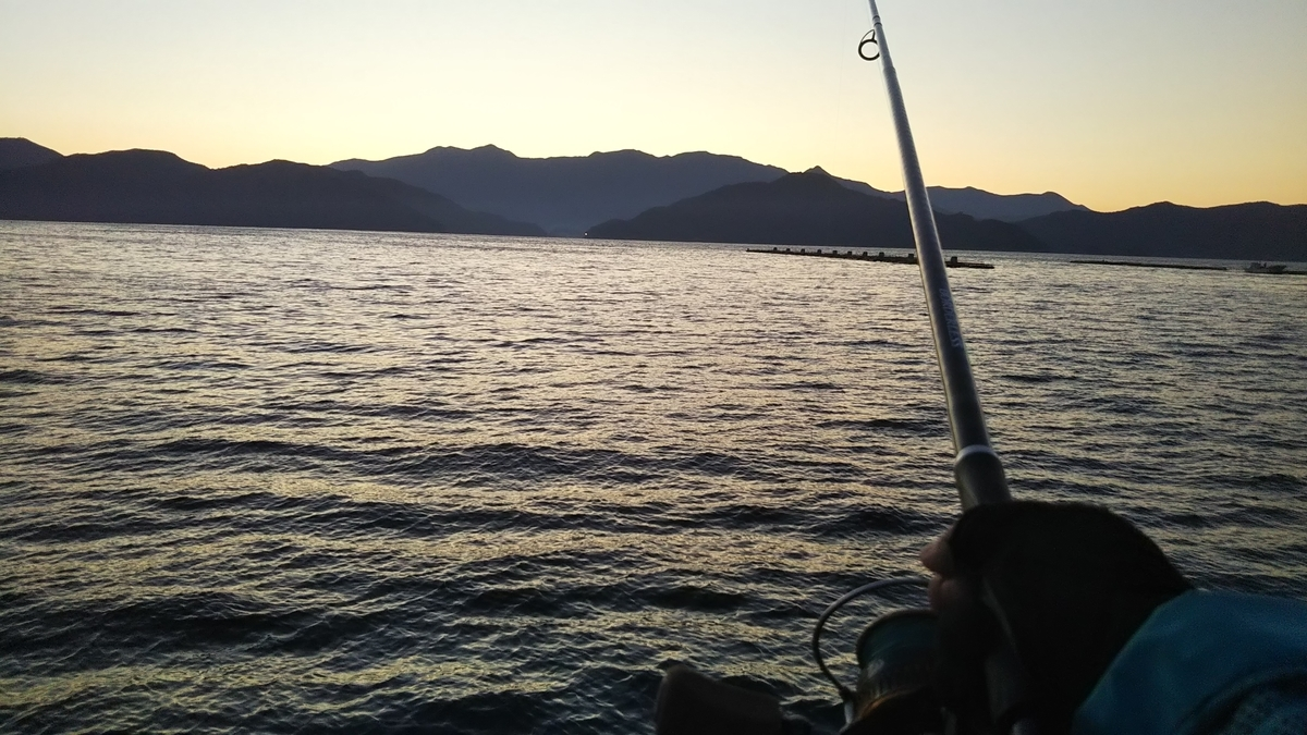 f:id:berao-setouchi-fishing:20191117205437j:plain