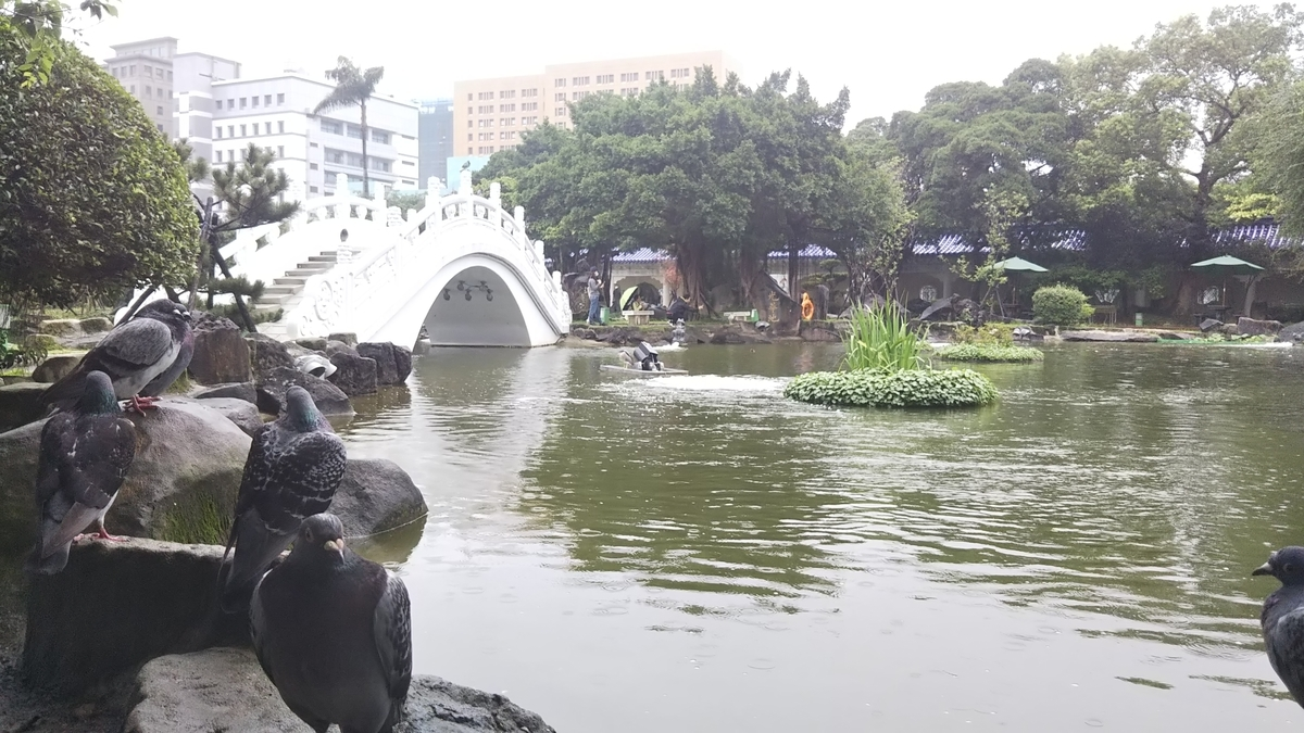 f:id:berao-setouchi-fishing:20191125224616j:plain