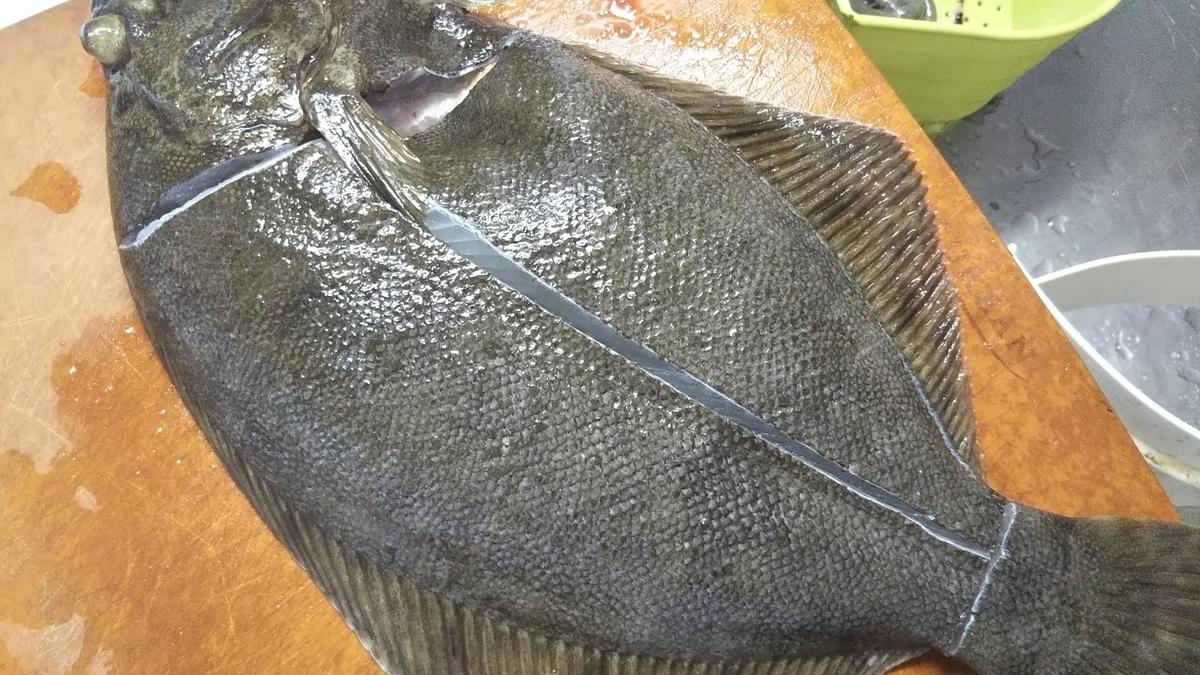 f:id:berao-setouchi-fishing:20191208162832j:plain