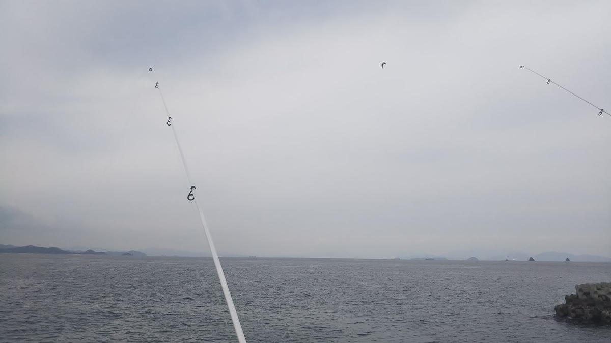 f:id:berao-setouchi-fishing:20191222224427j:plain