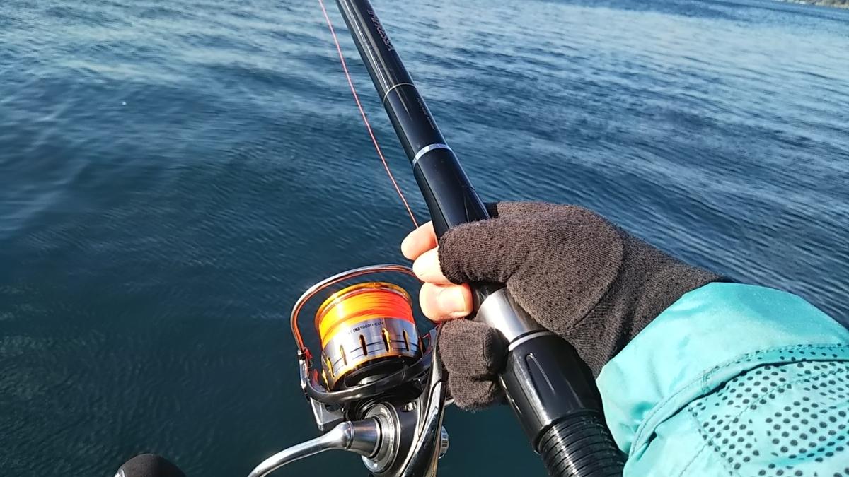 f:id:berao-setouchi-fishing:20200105204632j:plain