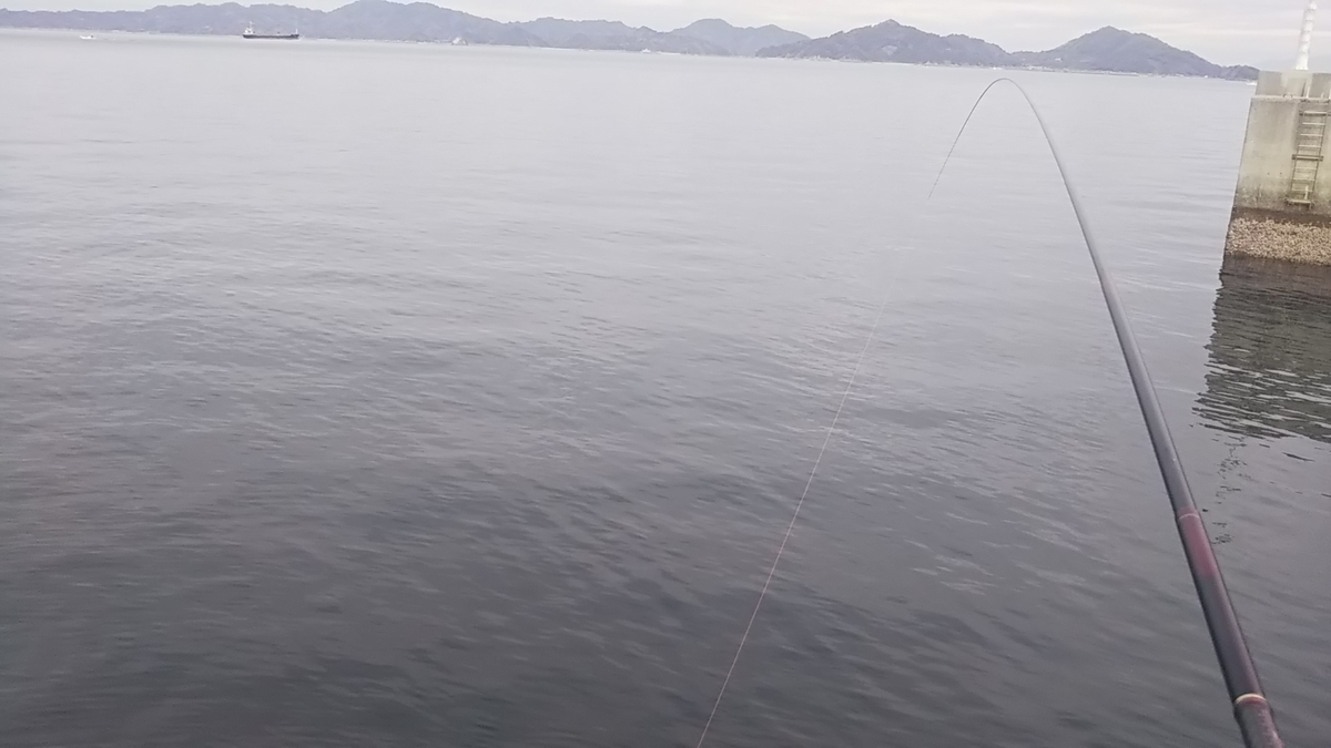 f:id:berao-setouchi-fishing:20200119211546j:plain