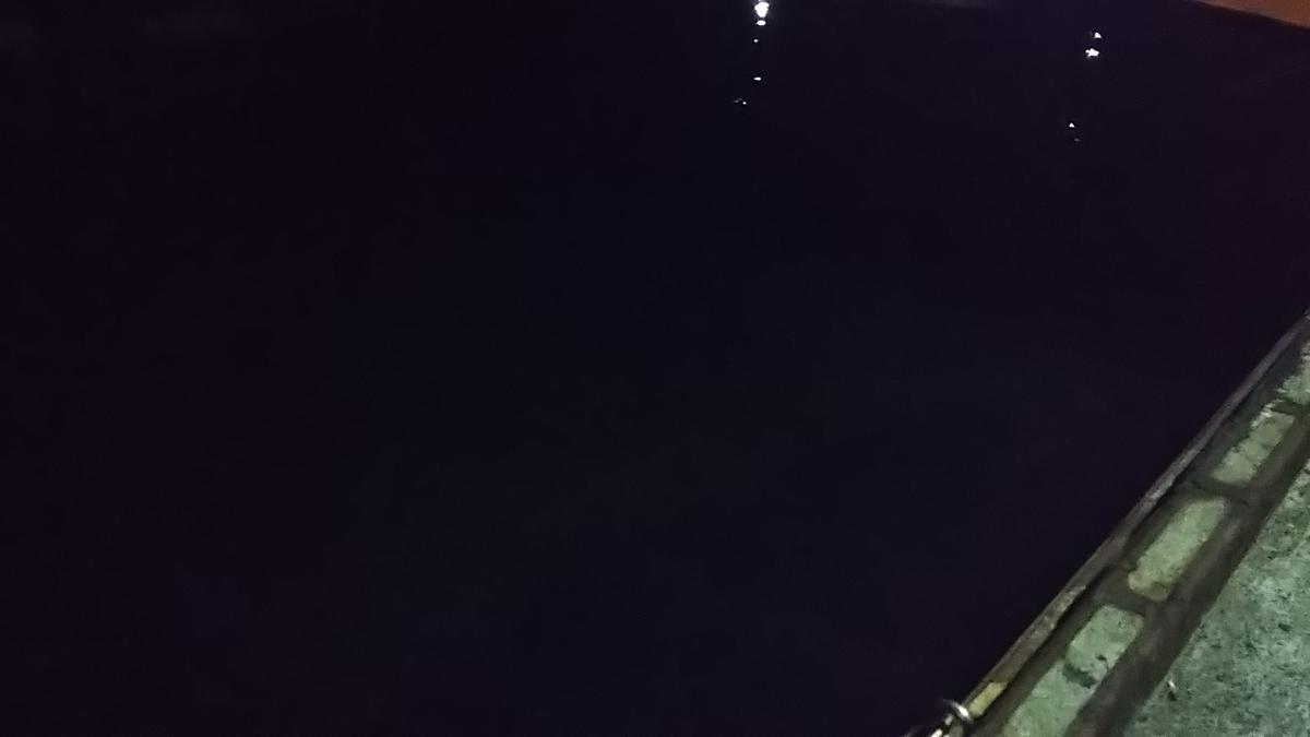 f:id:berao-setouchi-fishing:20200224164214j:plain