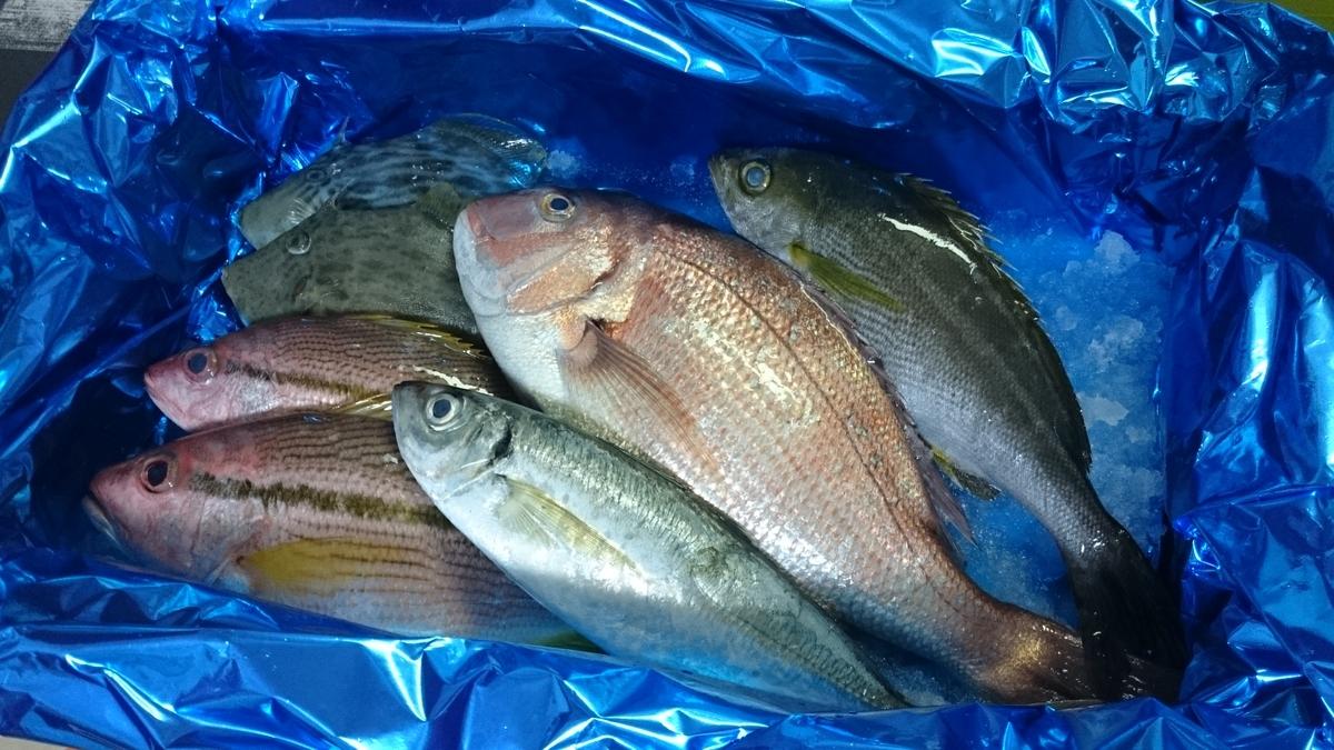 f:id:berao-setouchi-fishing:20200603220519j:plain