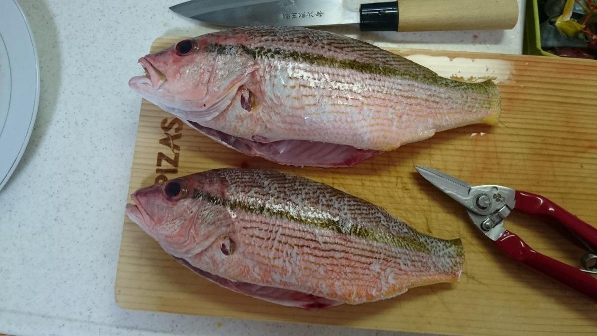 f:id:berao-setouchi-fishing:20200606121806j:plain