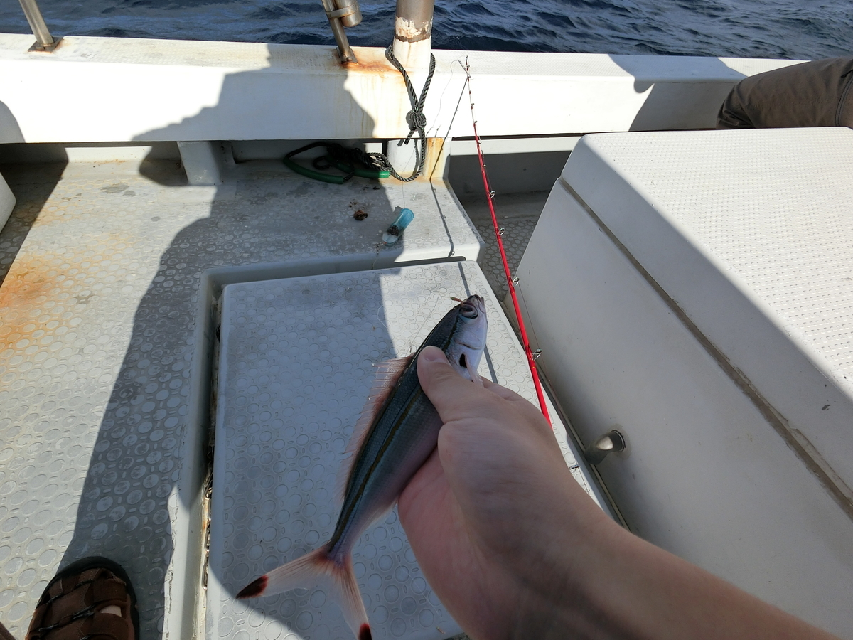 f:id:berao-setouchi-fishing:20200712224555j:plain