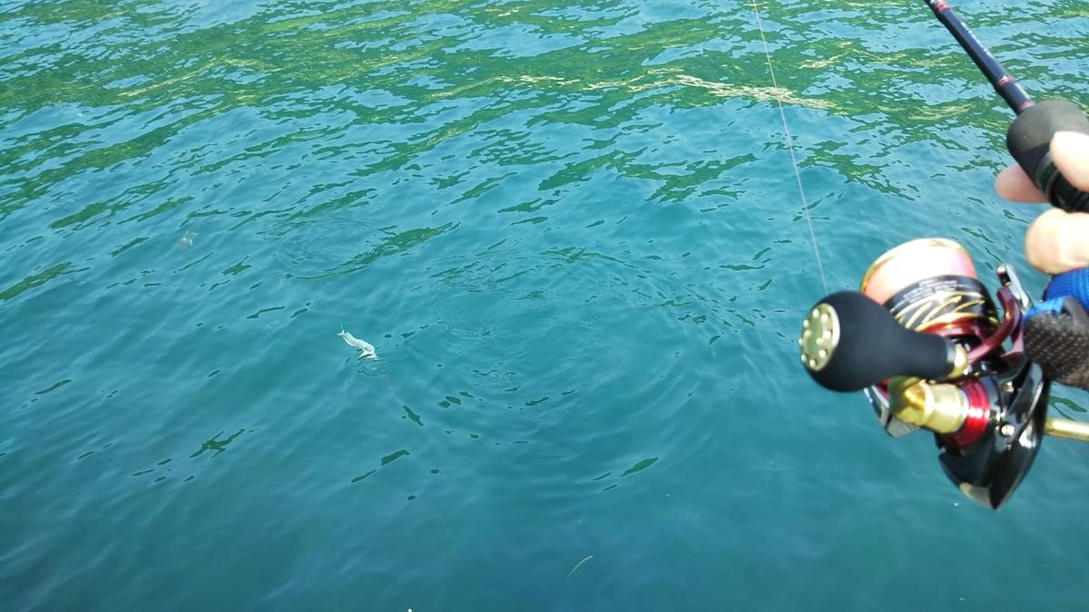 f:id:berao-setouchi-fishing:20200805215219j:plain