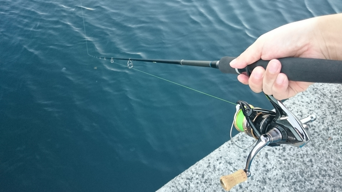f:id:berao-setouchi-fishing:20200819075421j:plain