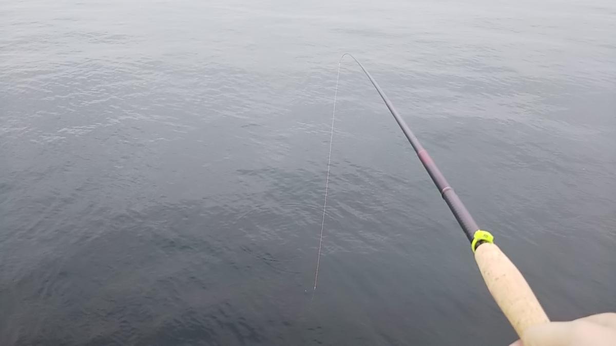 f:id:berao-setouchi-fishing:20200906105840j:plain