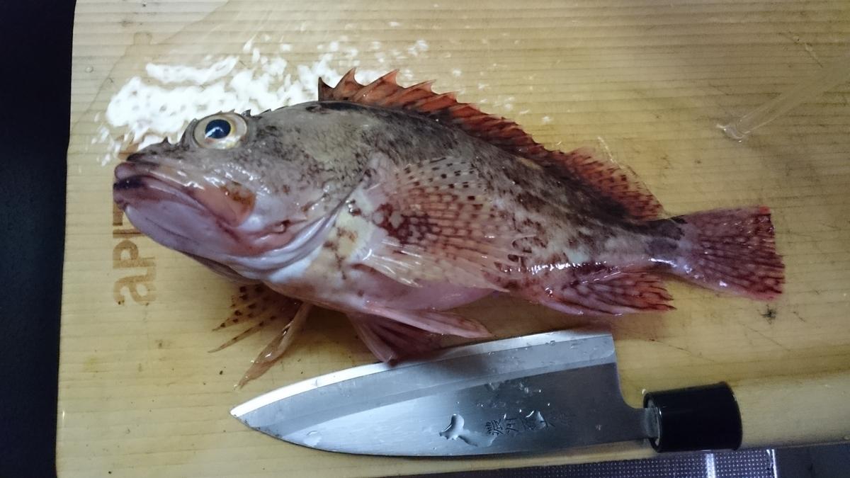 f:id:berao-setouchi-fishing:20201005235605j:plain