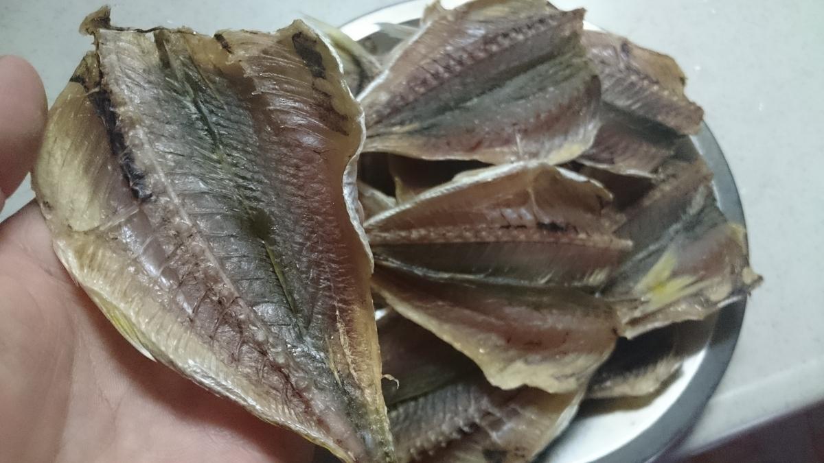 f:id:berao-setouchi-fishing:20201105190957j:plain